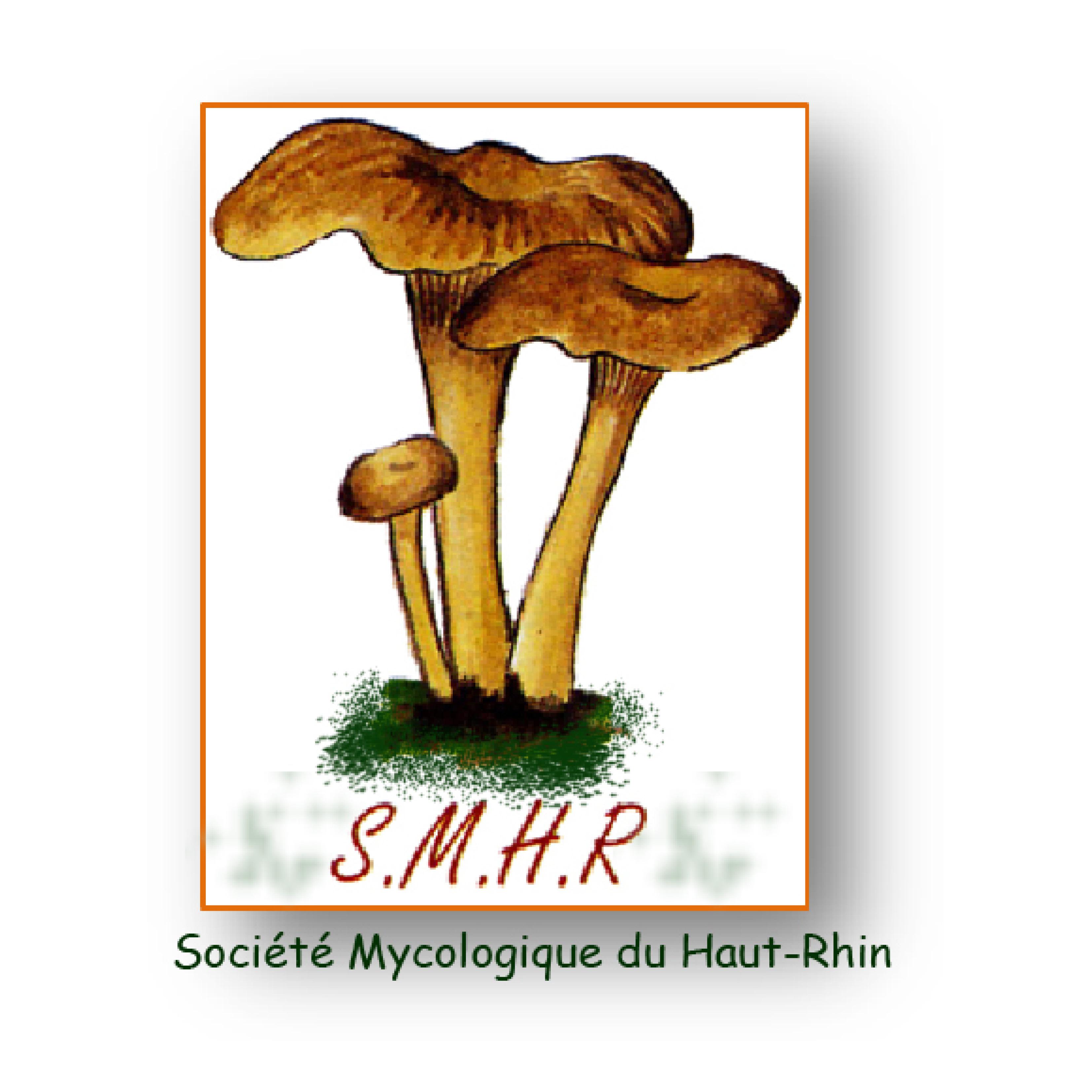 Société Mycologique du Haut-Rhin (SMHR)