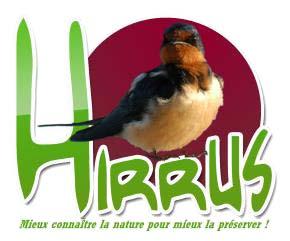 Hirrus